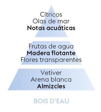 Pyramide Olfative Bois Deau