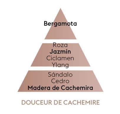 Pyramide Olfative Douceur De Cachemire