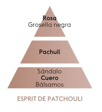 Pyramide Olfative Esprit De Patchouli
