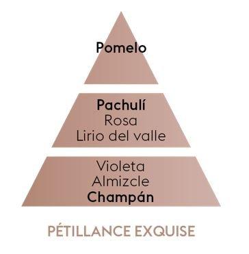 Pyramide Olfative Petillance Exquise